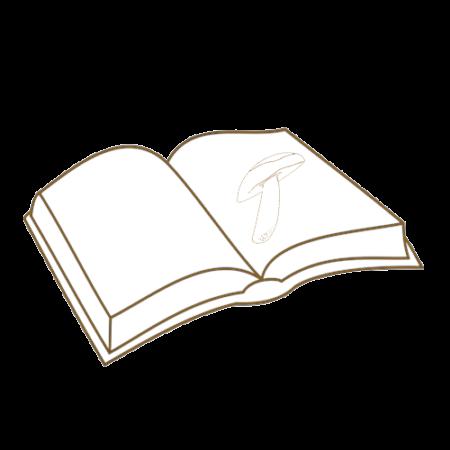# Bücher
