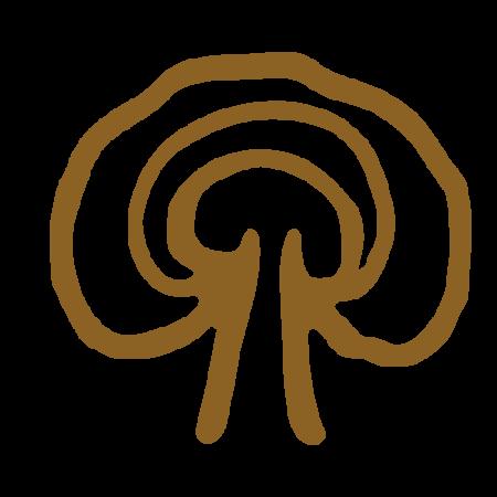 Reishi (Ganoderma)